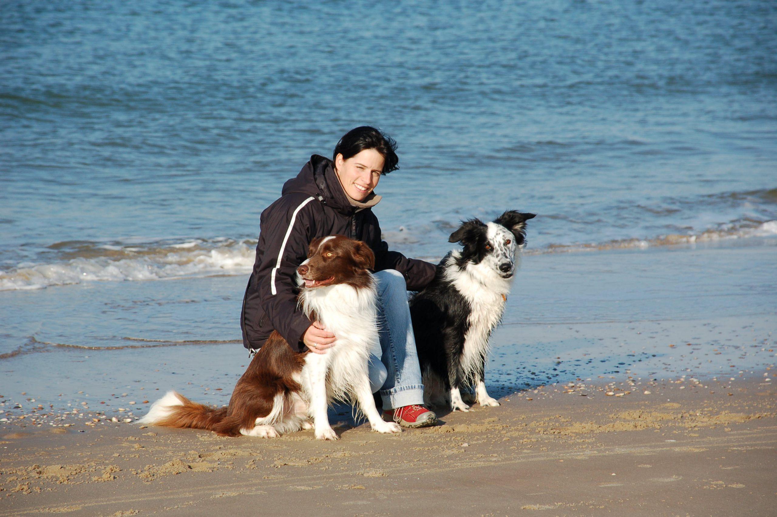 Hunde Physiotherapie Prüfung